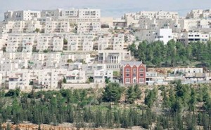 The hillside of Ramat Shlomo.  The brick building is the Chabad house.